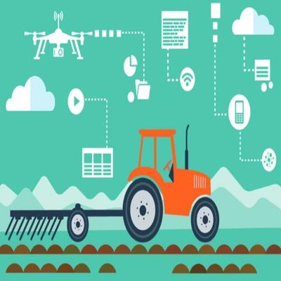 Implantação de Sistemas Agroflorestais