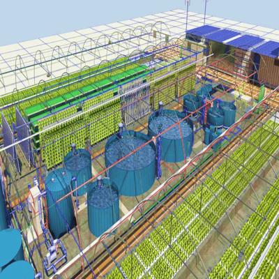 Projetos de aquaponia